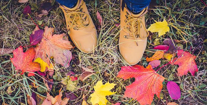 Schuhtrends Herbst 2017