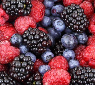 background-berries-berry-blackberries-87818_02