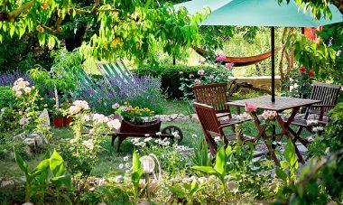 Garten-Trends